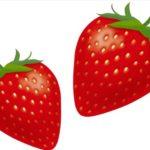 向後いちご園から苺をお取り寄せ!美味しく食べた後はジャム作り